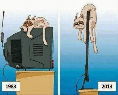 Funny_pics+Funny_cat_sleeping_on_TV+Funny_tv_pics+Old_tv_vs_new_LED_tv+difference_big_tv_slim_tv