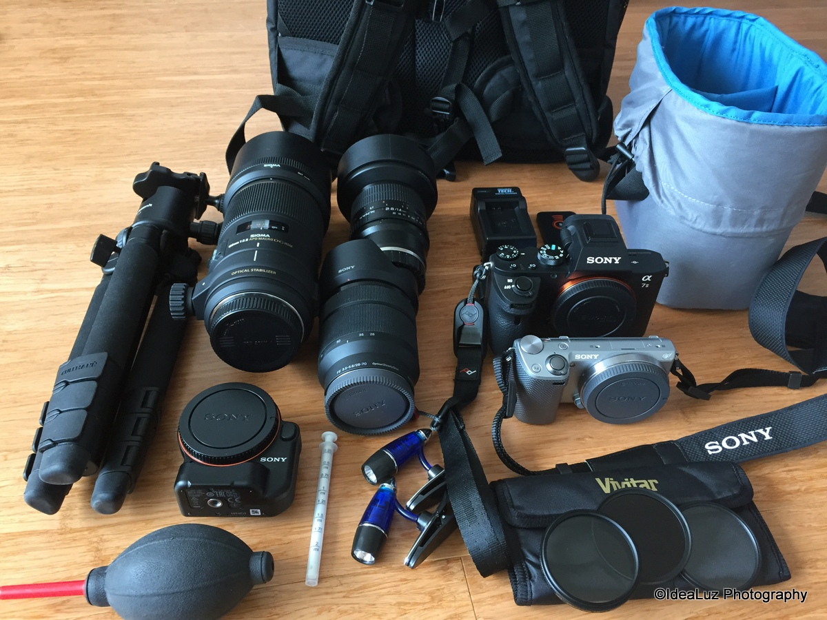 What's in my camera bag Sony A7II - iLHP
