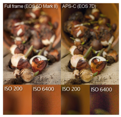 Canon 5dIII_vs_7d_images ISO comparison - iLHP