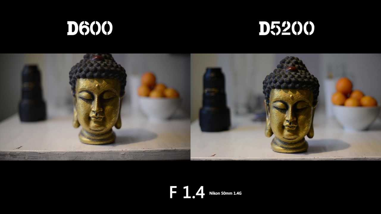 Depth of field comparison with APS-C vs Full frame sensors Nikon D600 vs Nikon D5200 - iLHP
