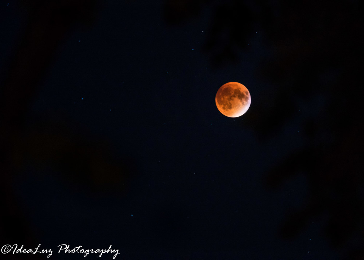 Shot with the teleconverter during the last red moon.